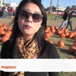 Learn How to Say Pumpkin in Mandarin Chinese and Visit a Local Pumpkin Patch with Emma