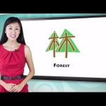 Yoyo Chinese Character Course – Introductory Lesson 3