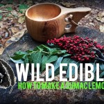 Wild Edibles-How to Make Sumac Lemonade