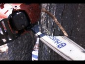 #HowTo Cut Down a Tree Safely – This Old House