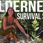 Wilderness #Survival #Skills Pt 3/4: Hand Drill, Tarp #Shelter, & Resource Gathering